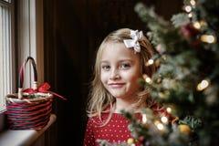 De Ochtend van Kerstmis Stock Afbeeldingen
