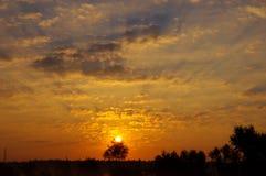 De ochtendhemel. Stock Foto