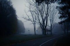 De ochtendmist van de mysticusherfst in het park Donkere boomstammen van installaties Stock Fotografie