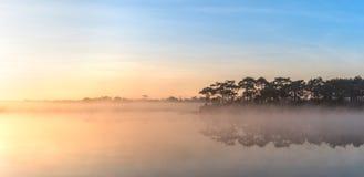 De ochtendzonsopgang over het meer met het bos van de silhouetpijnboom overdenkt waterspiegel Stock Foto