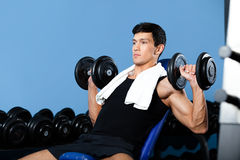 De oefeningen van de bodybuilder met gewichten Stock Foto's