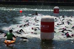 De oefeningssport van het Triathletestriatlon het gezonde zwemmen Stock Fotografie