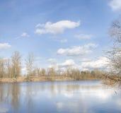 De Oekraïense rivier van de lente Stock Afbeeldingen