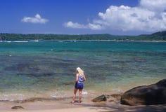 De oever van de Baai van Hanalei Stock Foto