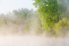 De Oever van de lente bij Zonsopgang Royalty-vrije Stock Fotografie