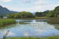 De oever van het meerscène van Killarney Stock Foto