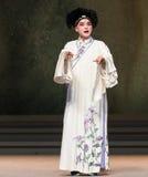 """De ogen fonkelen met de genoegen-negende handeling die kom-Kunqu Opera""""Madame Witte Snake† verzegelen Royalty-vrije Stock Afbeelding"""