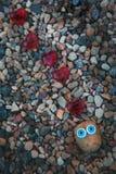 De Ogen Rode harten van strandstenen Stock Afbeelding