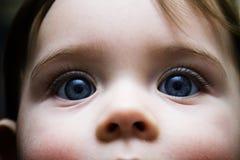 De ogen van de baby Stock Foto's