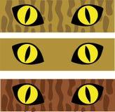 De ogen van de kat Royalty-vrije Stock Afbeelding