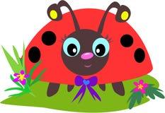 De Ogen van het lieveheersbeestje Royalty-vrije Stock Afbeelding