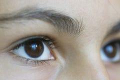 De ogen van Julia `s Royalty-vrije Stock Fotografie
