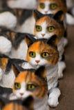De ogen van katten Royalty-vrije Stock Afbeelding