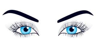 De ogen van vrouwen. Vector illustratie. Stock Foto