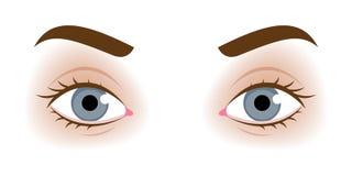 De ogen vectorillustratie van de realistische vrouw Stock Fotografie