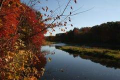 De ogenblikken van de Namastedaling in New England royalty-vrije stock fotografie