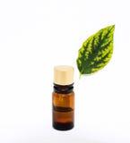 De Olie van Aromatherapy Royalty-vrije Stock Afbeeldingen