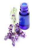 De olie van de lavendel Royalty-vrije Stock Afbeelding