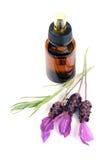 De olie van de lavendel Royalty-vrije Stock Afbeeldingen