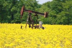 De Olie 2019 van Illinois royalty-vrije stock afbeeldingen