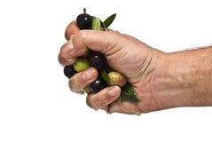 De olie van Mking met de handen. Stock Afbeelding