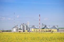 De oliefabriek die van het raapzaad biodiesel produceert. Stock Foto