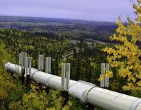 De oliepijpleiding van Alaska Stock Foto