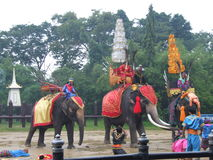 De olifant toont, Thailand. Royalty-vrije Stock Afbeeldingen
