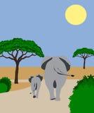 De olifant van de moeder en van de baby behinds Royalty-vrije Stock Fotografie