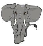 De olifant van het beeldverhaal vector illustratie