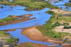 De Olifants-rivier royalty-vrije stock afbeeldingen