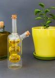 De olijfolie van twee glasflessen bevindt zich dichtbij een bloem tegen een donkere achtergrond Stock Foto's
