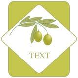 De olijfolieembleem/pictogram van het etiket Stock Foto's