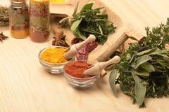 De olika färgrika kryddorna på trätabellen Arkivbild