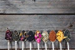 De olika sorterna av te som framläggas som en prövkopia i silverskedarna, bästa sikt arkivfoto