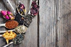 De olika sorterna av te som framläggas som en prövkopia i silverskedarna, bästa sikt arkivbild