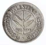 Uitstekend Palestina 50 Mils - Staarten royalty-vrije stock foto