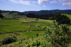 De omgeving van Furnas.Sao Migueal. Stock Foto