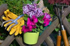 De omheining van de de bloemtuin van de lente royalty-vrije stock afbeeldingen