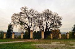 De omheining van de oude tuin Royalty-vrije Stock Foto