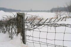 De omheining van de sneeuw Royalty-vrije Stock Foto's