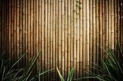 De omheining van het bamboe Stock Foto's