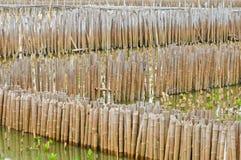 De omheining van het bamboe stock afbeeldingen