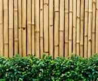De omheining van het bamboe Royalty-vrije Stock Fotografie