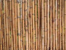 De Omheining van het bamboe Royalty-vrije Stock Foto