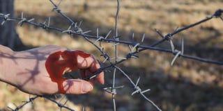 De omheining van het de holdingsprikkeldraad van de vrouwen` s hand voor emotionele gevangenschap en wil aan onafhankelijke stock afbeelding