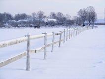 De omheining van het landbouwbedrijf in de winter Stock Fotografie