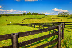 De omheiningen van het paardlandbouwbedrijf Royalty-vrije Stock Foto