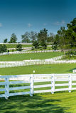 De Omheiningen van het paardlandbouwbedrijf op een Duidelijke Dag Royalty-vrije Stock Fotografie
