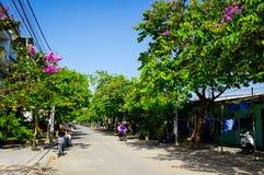 De onbekende fiets bemant is in Bloeiende purpere bloemenweg stock afbeeldingen